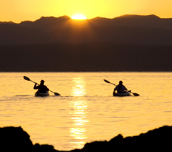 Couple Kayaking During Sunset